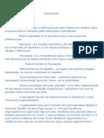 3 - PERCEPCAO