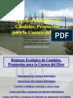 Caudales Ecologicos Ebro