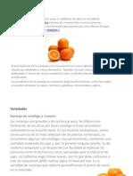 Diapositivas Naranjas