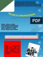 Exposicion Secreto Profesional Definitiva