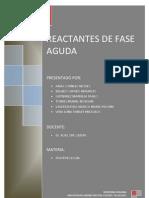 RFA - Monografia