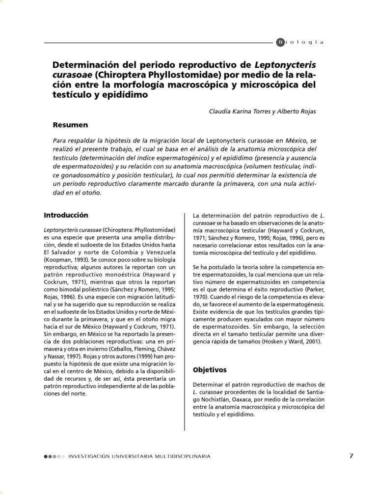 Determinación del periodo reproductivo de Leptonycteris curasoae ...