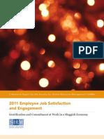 11-0618 Job Satisfaction Fnl