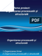 Organizarea Procesuala Si Structurala - Rev (1)