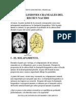 Lesiones Del Craneo