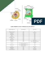 Tabel Perbedaan Sel Tumbuhan Dan Sel Hewan