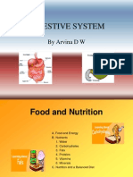 Digestive System - Sf