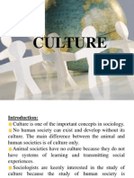 lecture06-cultureandtypes-130116075252-phpapp01