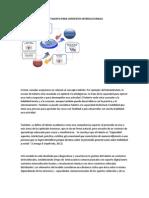 MODELO DE GESTIÓN DEL TALENTO PARA CONTEXTOS INTERCULTURALES.docx