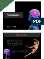 Cuerpo Humano y Empresa