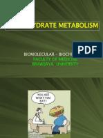 Ch Metabolism