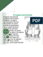 Regalo Lector Lagarto