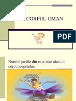 Cor Pulu Man