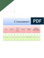 clasificarea consumurilor