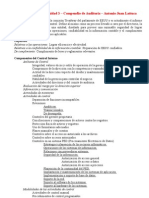 Informe COSO - A. Racca