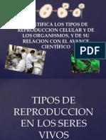 IDENTIFICA LOS TIPOS DE REPRODUCCION CELULAR Y DE LOS ORGANISMS, Y DE SU RELACION CON EL AVANCE CIENTÍFICO