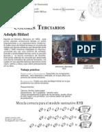 proyecto práctico 5  terciarios