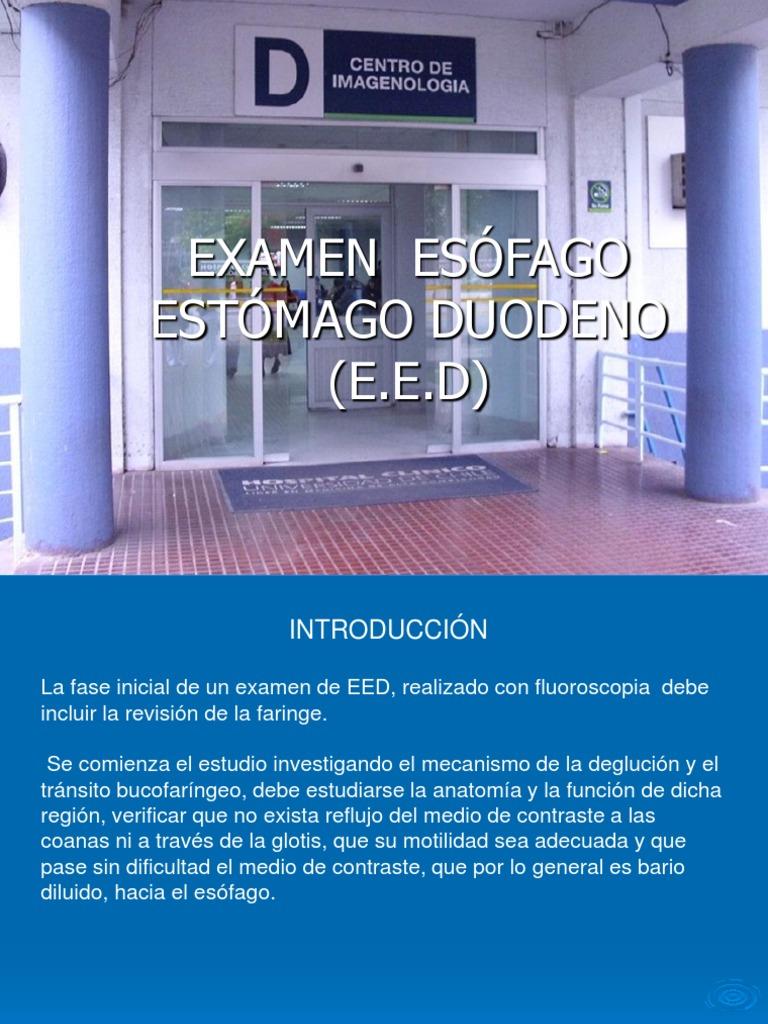 Presentación Examen E.E.D.