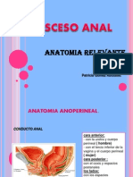 Absceso y Fistula Anal