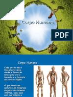Corpo Humano Tecidos