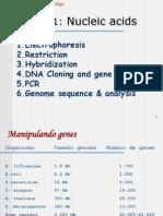 07. Tecnicas de Biologia Molecular