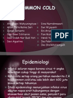 Common Cold Kelompok (2)