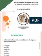 Expo Estomatitis