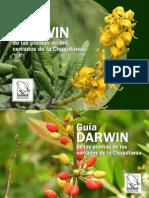 Guia Darwin Plantas Cerrados Chiquitania