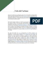 Ciclos Biológicos - Carbono, Nitrogeno y Agua