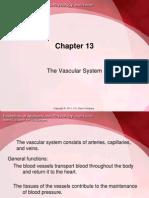 A&P Cardiovascular System PowerPoint (nursing)