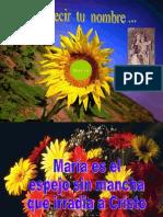 Virgen Maria - M. María