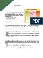 Evaluacion Intermedia Politica y Economia 10