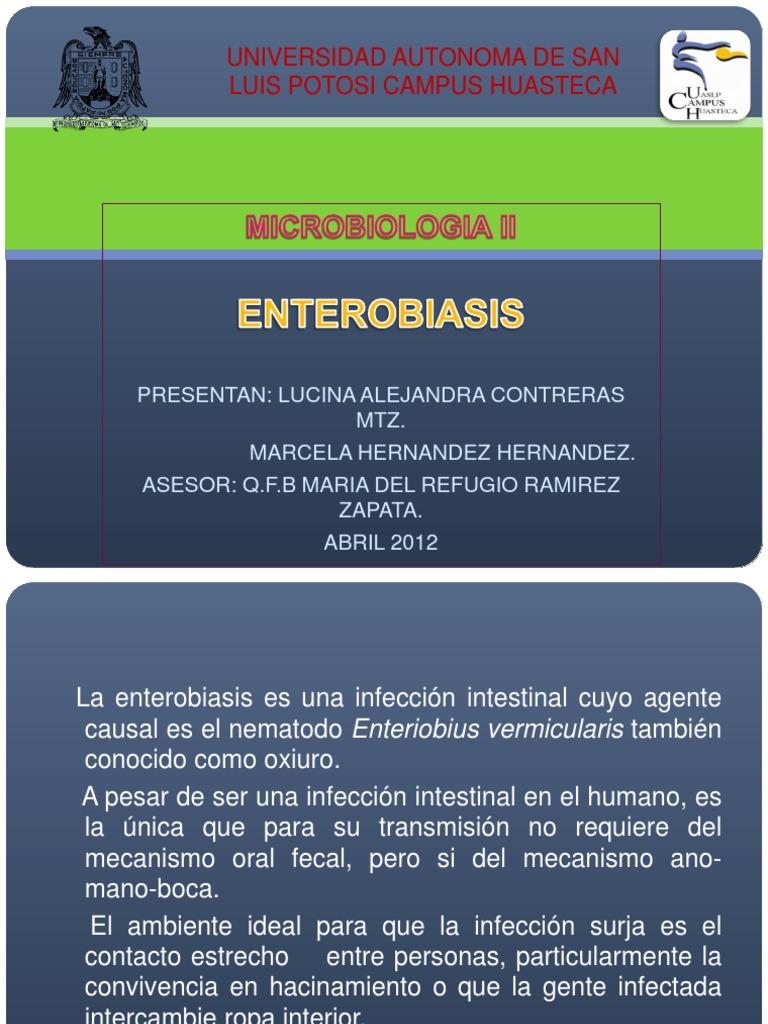 Enterobius vermicularis antecedentes historicos, Enterobius vermicularis antecedentes historicos