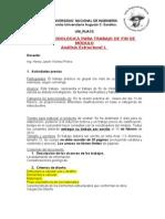 Guia Fin de Modulo Analisis Estruct.