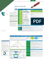 8. Basel flyer - CCR.pdf