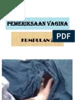 Pemeriksaan Vagina