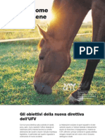 Cavalli Come Occup Arsene