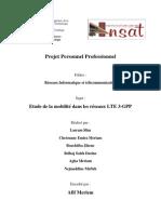 Rapport Final Pfa