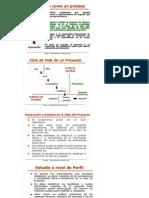 Proyectos de Inversion - Formulacion y Evaluacion - Preguntas y Respuestas Capitulo 1