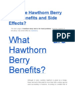 What Are Hawthorn Berry Herb Benefits and Side Effects?