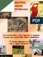 Sistema Digestivo Animais