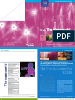 cea_lp18-nanoworld_gb.pdf
