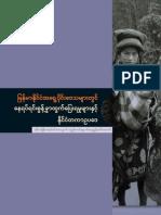 Report 2008 Idp Burmese