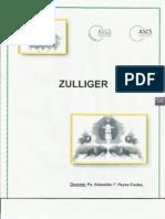 Guía de interpretación y análisis Zulliger 2013