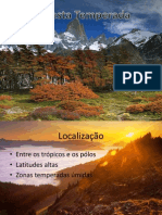 Floresta Temperada2