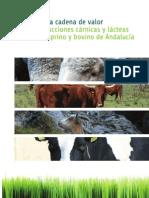 cadenavalorcompleto-111213035110-phpapp02