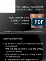 Renal (Urinary) System