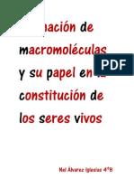 Formación de macromoleculas  y su papel en la constitución de los seres vivos