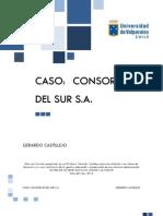 Consorcio Del Sur