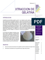 Extraccion de Gelatina